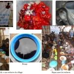 The Meal Bénin